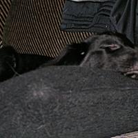 29.10.2004